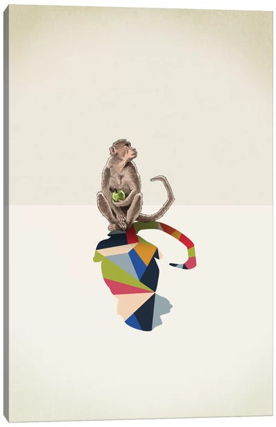 Walking Shadow Monkey Canvas Art Print