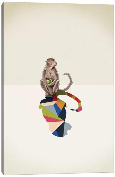 Walking Shadow Monkey Canvas Art Print