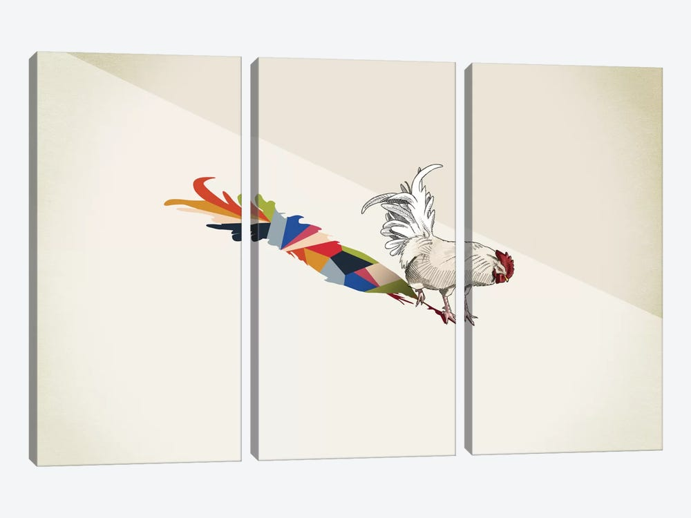 Walking Shadow Rooster by Jason Ratliff 3-piece Canvas Print