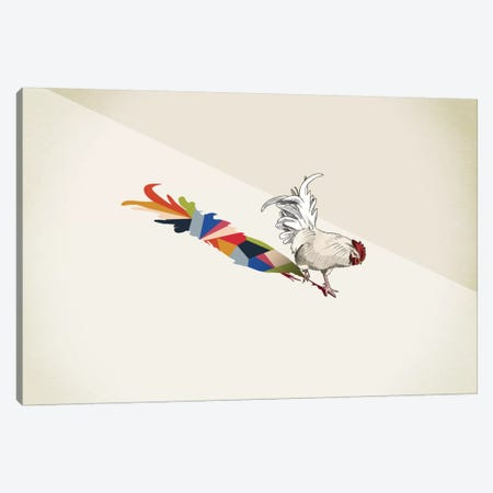Walking Shadow Rooster Canvas Print #JRF19} by Jason Ratliff Canvas Art Print