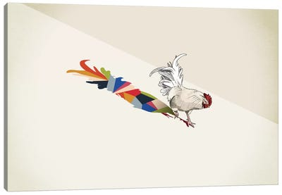 Walking Shadow Rooster Canvas Art Print