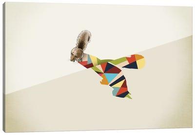 Walking Shadow Squirrel Canvas Print #JRF20