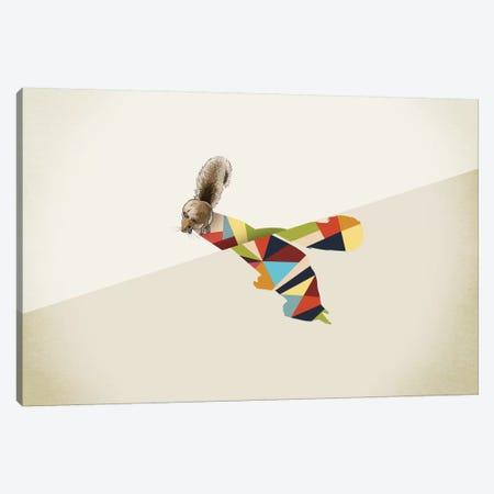 Walking Shadow Squirrel Canvas Print #JRF20} by Jason Ratliff Canvas Wall Art