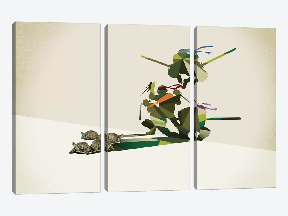 Walking Shadow Turtles by Jason Ratliff 3-piece Canvas Art Print