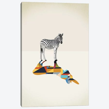 Walking Shadow Zebra Canvas Print #JRF23} by Jason Ratliff Canvas Wall Art