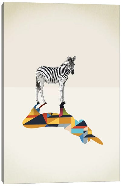 Walking Shadow Zebra Canvas Art Print