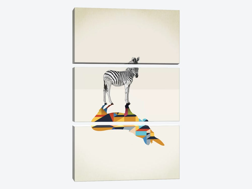 Walking Shadow Zebra by Jason Ratliff 3-piece Canvas Wall Art