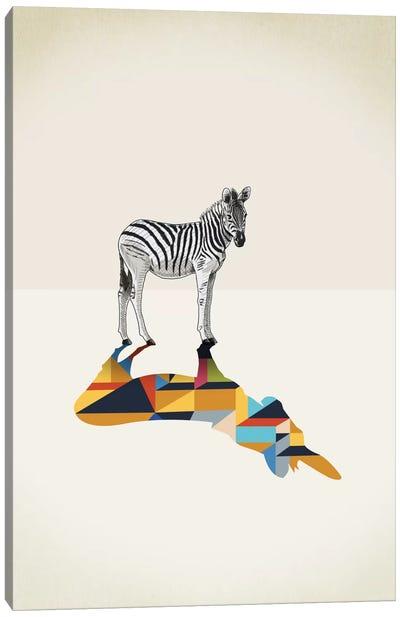 Walking Shadow Zebra Canvas Art Print