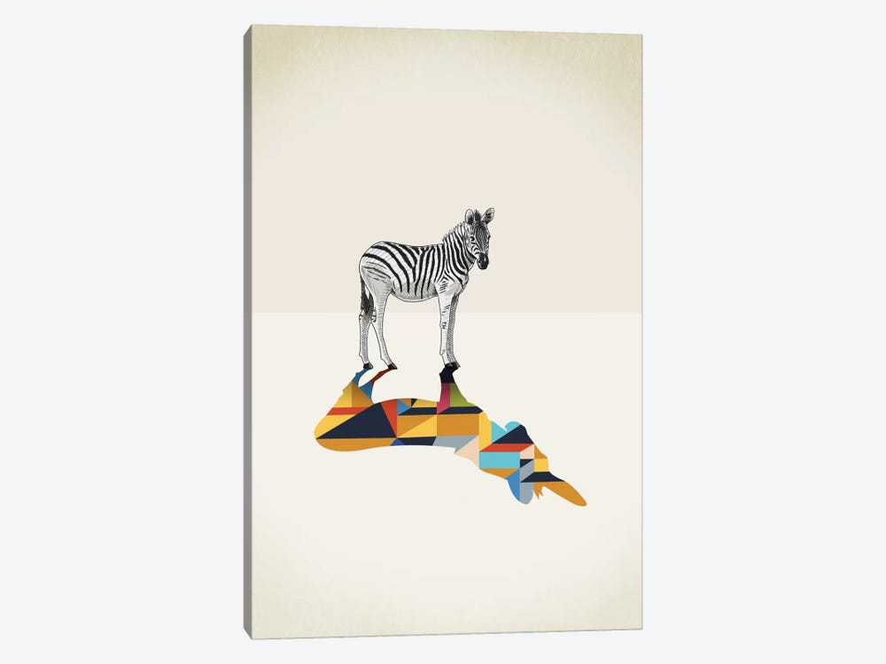 Walking Shadow Zebra by Jason Ratliff 1-piece Canvas Wall Art