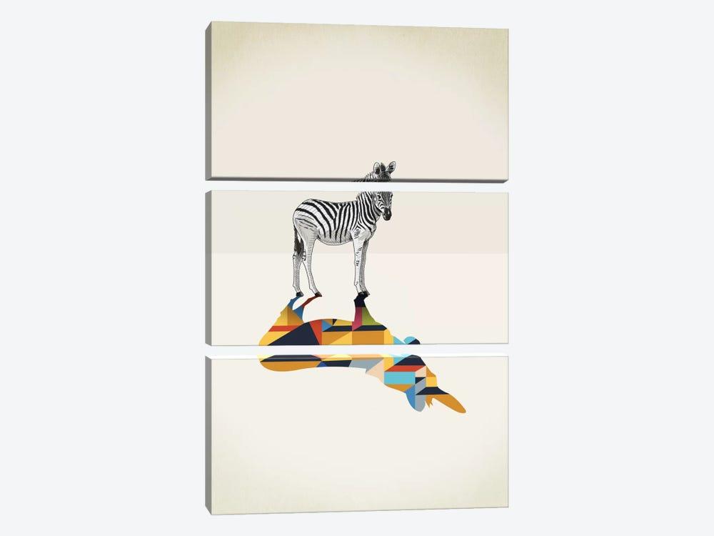 Walking Shadow Zebra by Jason Ratliff 3-piece Canvas Wall Art