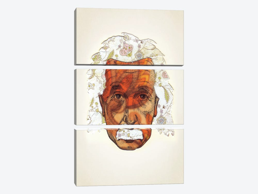 Einstein by Jason Ratliff 3-piece Canvas Art