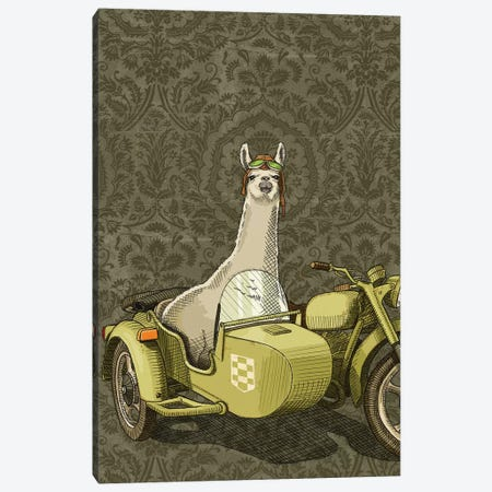 Sidecar Llama Canvas Print #JRF33} by Jason Ratliff Canvas Art Print