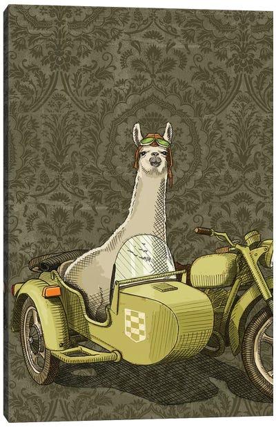 Sidecar Llama Canvas Art Print