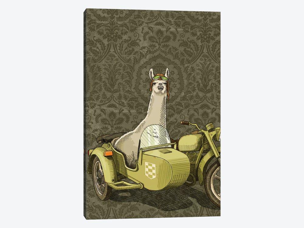 Sidecar Llama by Jason Ratliff 1-piece Art Print