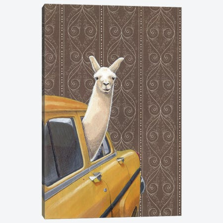 Taxin Llama Canvas Print #JRF35} by Jason Ratliff Canvas Artwork