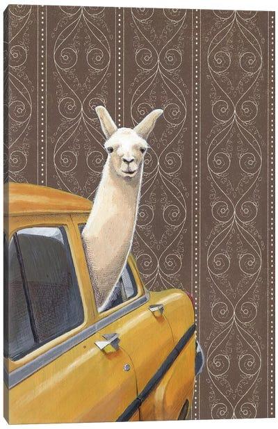 Taxin Llama Canvas Art Print