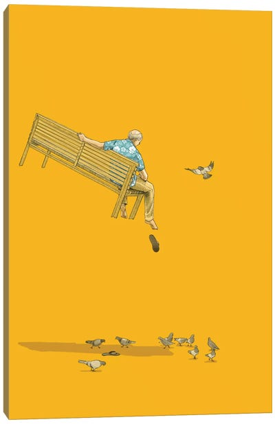 Float With The Pigeons Canvas Art Print