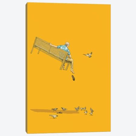 Float With The Pigeons Canvas Print #JRF5} by Jason Ratliff Canvas Artwork