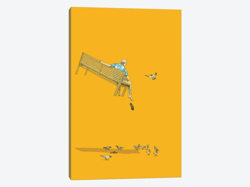 Float With The Pigeons by Jason Ratliff 1-piece Canvas Art Print