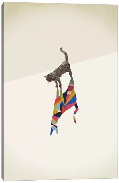 Walking Shadow Cat I Canvas Art Print