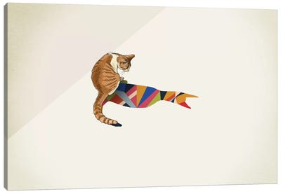 Walking Shadow Cat II Canvas Art Print