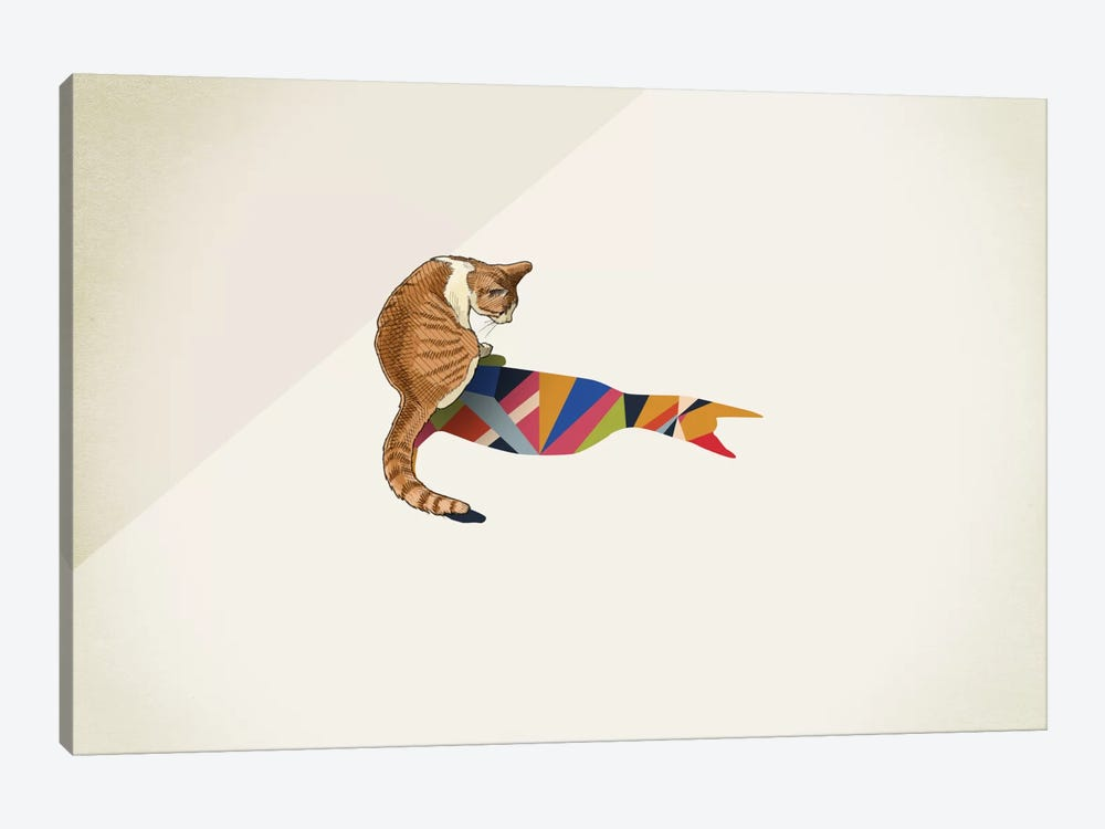 Walking Shadow Cat II by Jason Ratliff 1-piece Canvas Artwork
