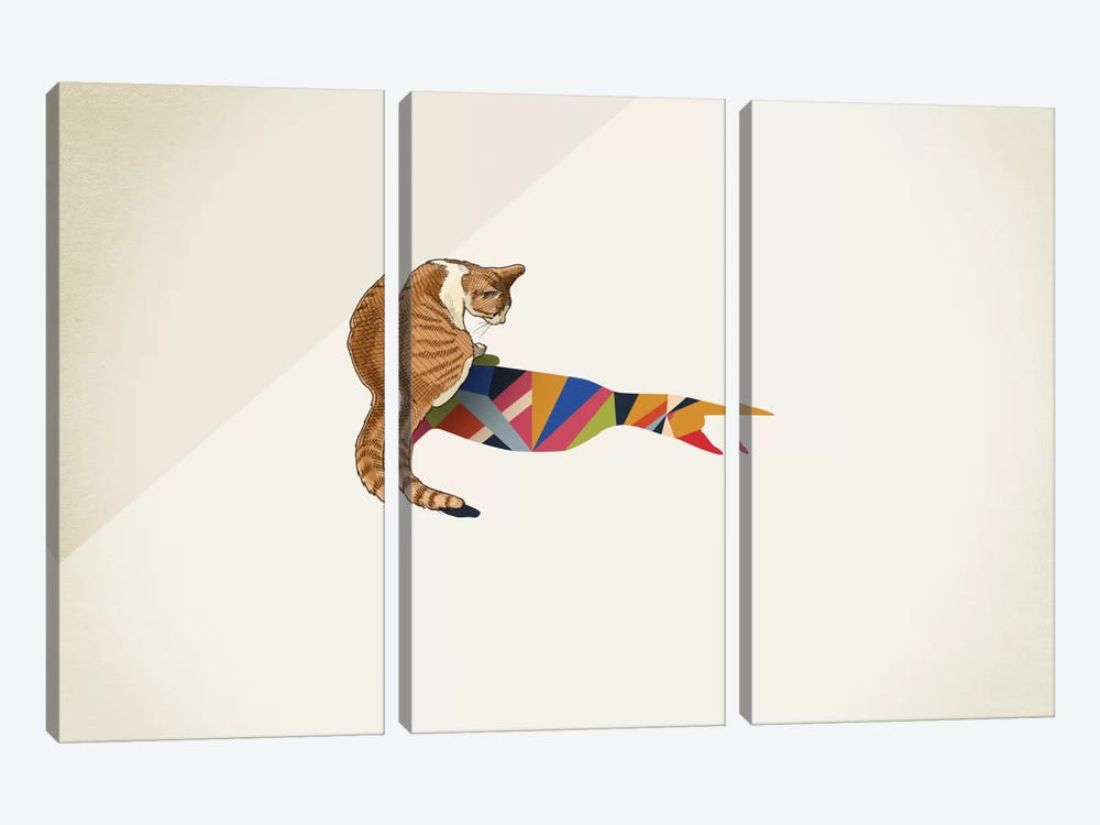 Walking Shadow Cat II by Jason Ratliff 3-piece Canvas Artwork