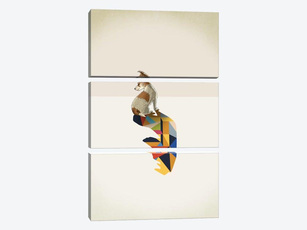 Walking Shadow Dog by Jason Ratliff 3-piece Canvas Print