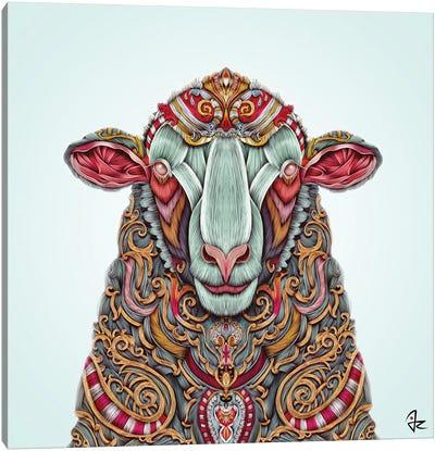 Sheep Canvas Print #JRI29