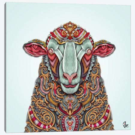 Sheep Canvas Print #JRI29} by Giulio Rossi Canvas Print