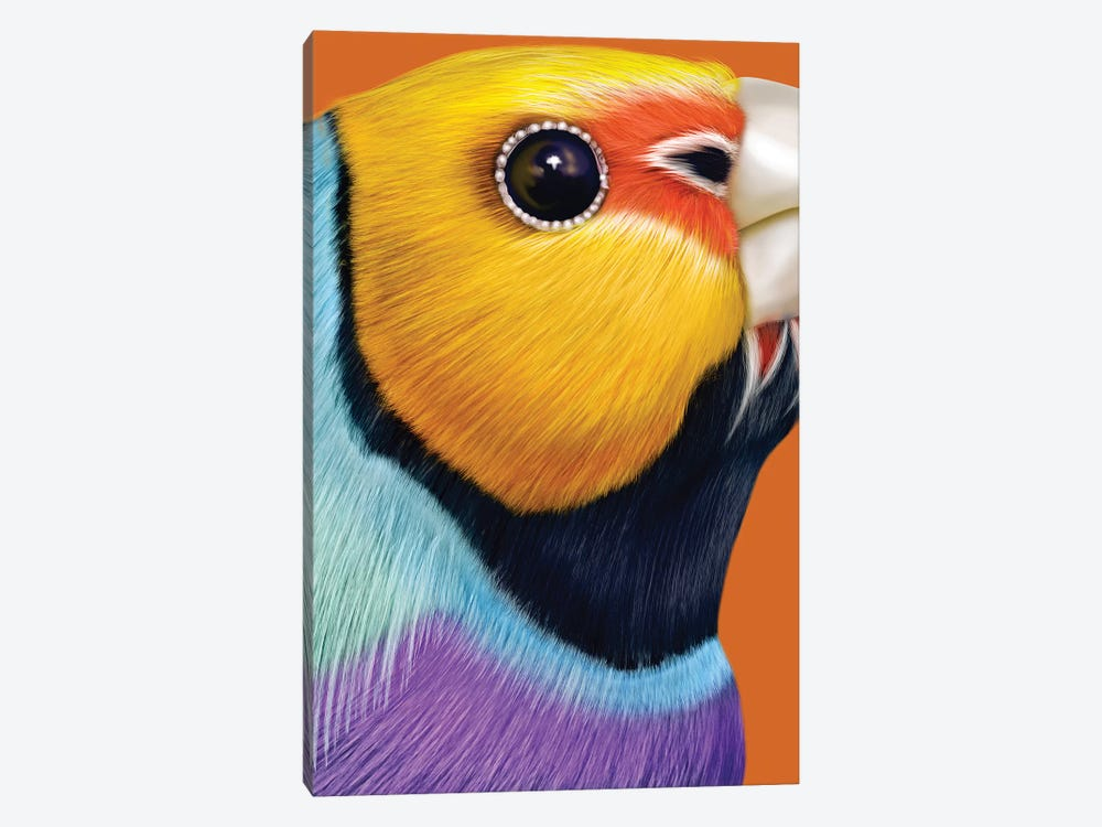 Gouldian Finch by Giulio Rossi 1-piece Art Print