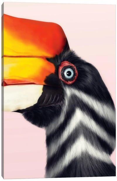 Rhinoceros Hornbill Canvas Art Print