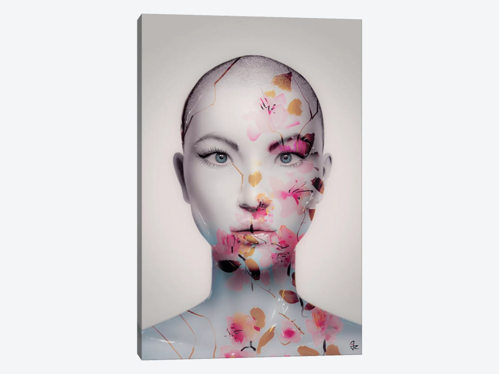 Where's My Humanity by Giulio Rossi 1-piece Canvas Artwork