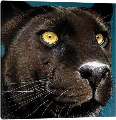 Black-Panther Canvas Art Print