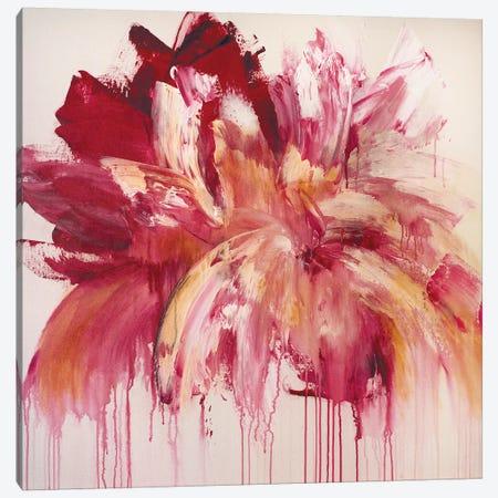 Pink Rhapsody Canvas Print #JRM71} by Jude Remedios Canvas Wall Art
