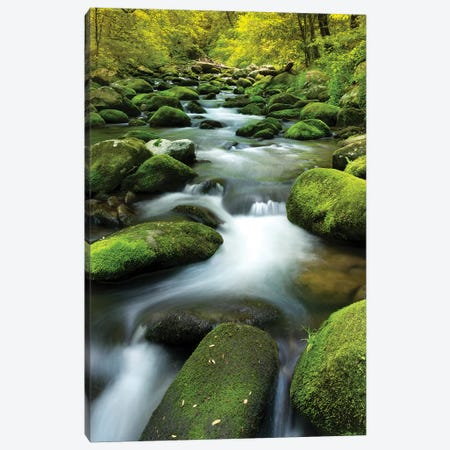 Mountain Stream Canvas Print #JRP114} by Jonathan Ross Photography Art Print
