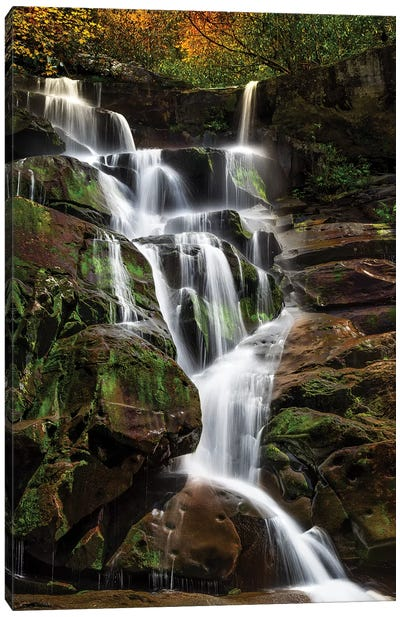 Tranquil Falls Canvas Art Print