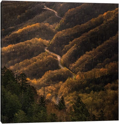 An Autumn Road Through The Mountains Canvas Art Print