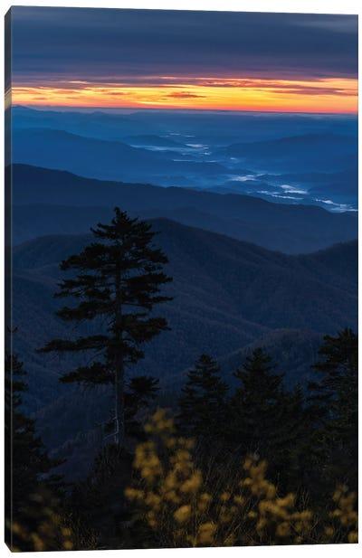 Sunset From Afar Canvas Art Print