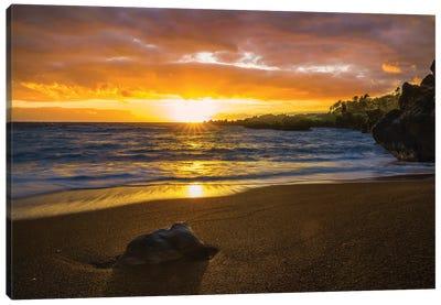 Sunrise In Hawaii Canvas Art Print