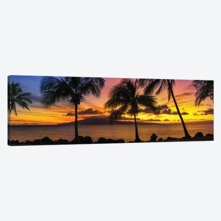 Palm Tree Sunset Canvas Print #JRP153} by Jonathan Ross Photography Canvas Artwork