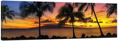 Palm Tree Sunset Canvas Art Print