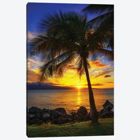 The Sun Setting Over Maui Canvas Print #JRP156} by Jonathan Ross Photography Canvas Art Print