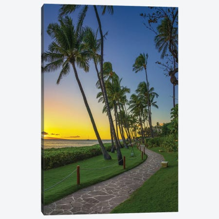 A Stroll In Maui Canvas Print #JRP159} by Jonathan Ross Photography Canvas Art