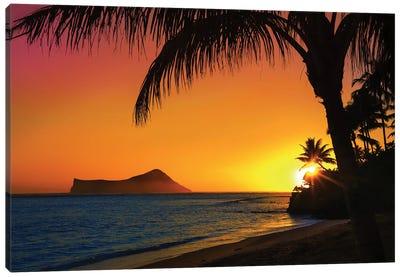 Sunset In Oahu Canvas Art Print