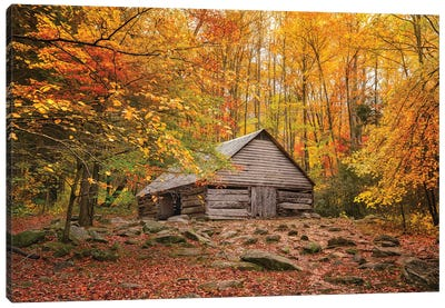 Fall Has Come Home Canvas Art Print