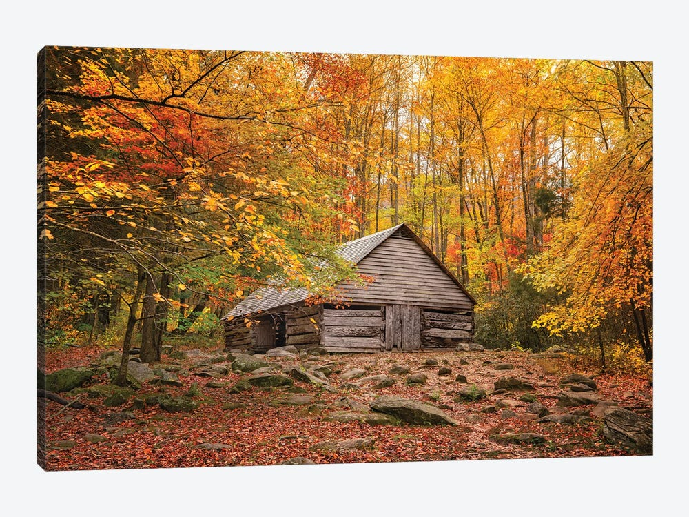 Fall Has Come Home by Jonathan Ross Photography 1-piece Canvas Artwork