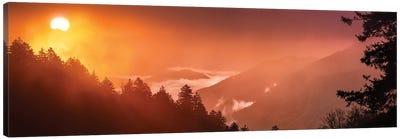 A Foggy Sunrise In The Smokies Canvas Art Print