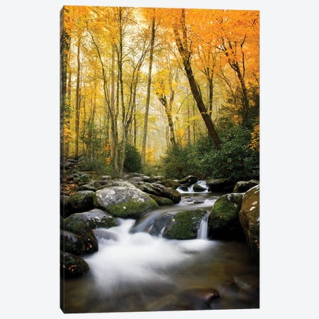 Sunset Glow Stream Canvas Print #JRP174} by Jonathan Ross Photography Canvas Print