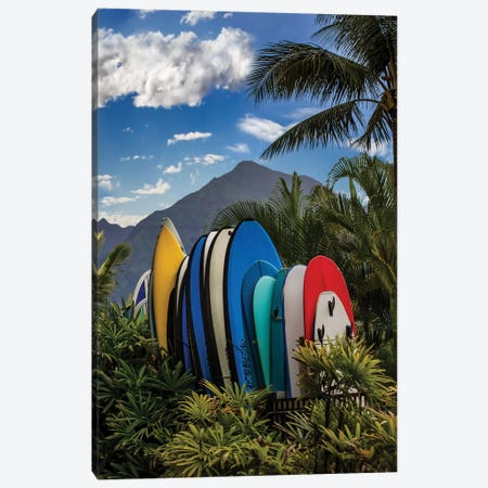 Hang Ten Canvas Print #JRP34} by Jonathan Ross Photography Canvas Art
